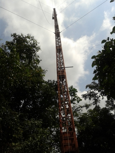 The bungee crane